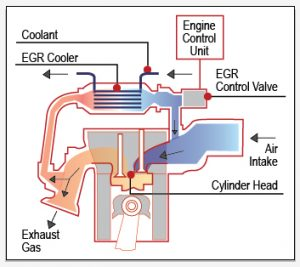 egr cooler white smoke