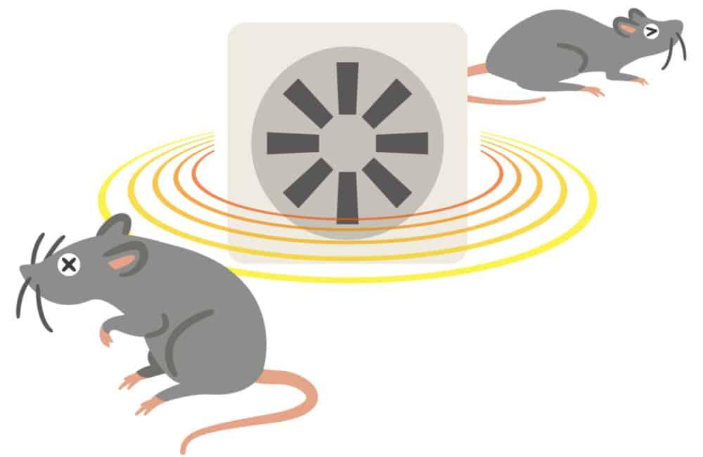 Rat Repellent